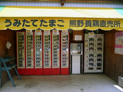 Kumafuku10